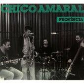 Província de Chico Amaral