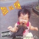 Everything Sucks by Reel Big Fish