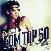 EDM Top 50, Vol. 2 by Various Artists