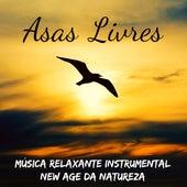 Asas Livres - Música Relaxante Instrumental New Age da Natureza para Equilibrar Chakras Ser Mais Feliz Aula de Yoga e Manter A Calma von El Alma