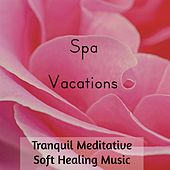 Spa Vacations - Tranquil Meditative Soft Healing Music for Deep Concentration Mental Exercises with Binaural Relaxing New Age Sounds by Various Artists