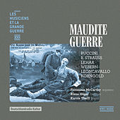 Maudite guerre (Les musiciens et la Grande Guerre, Vol. 22) von Karola Theill