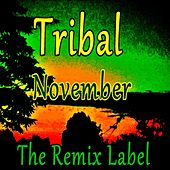 Tribal November de Various Artists