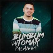 Bumbum Vai Tomar Palminha de MC Wm