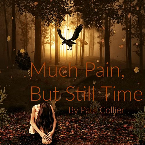 Much Pain, but Still Time by Paul Collier