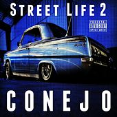 Street Life 2 by Conejo