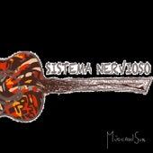 Sistema Nervioso, Vol. 2 (Compilado MúsicadelSur) de Various Artists