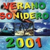 Verano Sonidero 2001 de Various Artists