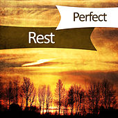 Perfect Rest – New Age Music, Peaceful Mind, Soft Music for Relaxation, Stress Free, Soothing Flute by Relax - Meditate - Sleep