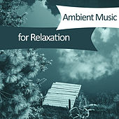 Ambient Music for Relaxation – Soothing Piano, Flute Music, Peaceful Mind, Sounds Relieve Stress, Music for Relaxation von Soothing Sounds