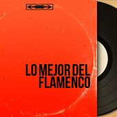 Lo mejor del Flamenco by Various Artists