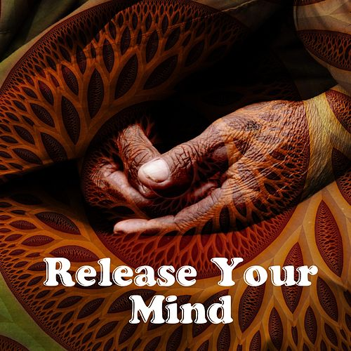 Release Your Mind de Meditation Music Zone