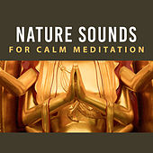 Nature Sounds for Calm Meditation – Relax with New Age, Soothing Sounds, Meditation & Relaxation, Soft Music de Zen Meditation and Natural White Noise and New Age Deep Massage