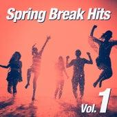 Spring Break Hits, Vol. 1 von Various Artists