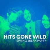 Hits Gone Wild (Spring Break Party) von Various Artists