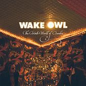The Private World of Paradise de Wake Owl