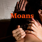 Moans by Various Artists