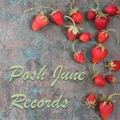 Posh June Records de Various Artists