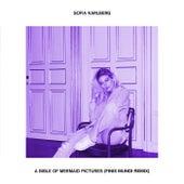 A Bible Of Mermaid Pictures (Finis Mundi Remix) von Sofia Karlberg