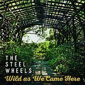 Scrape Me Off the Ceiling by The Steel Wheels