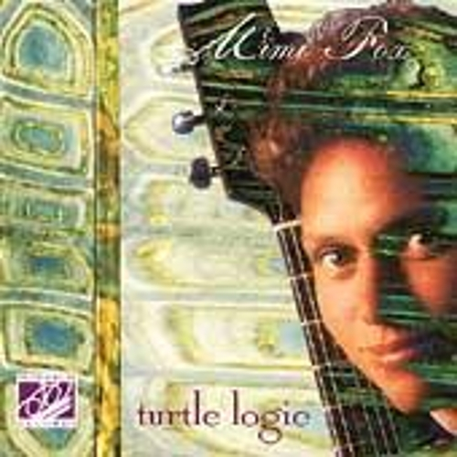 Turtle Logic by Mimi Fox
