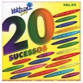 20 Sucessos SomZoom Sat, Vol: VII von Various Artists