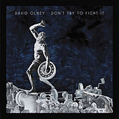 Don't Try To Fight It von David Olney