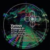 Various Visions 01 de Various Artists
