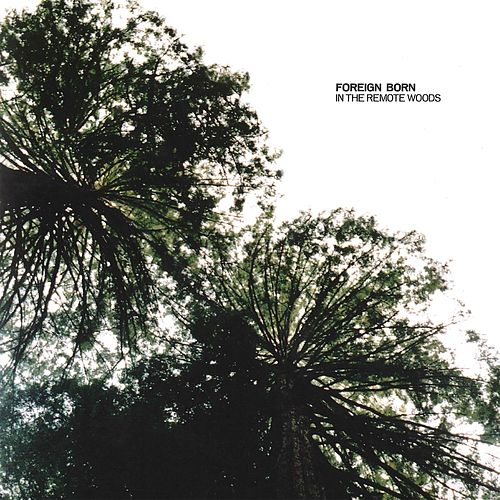 In the Remote Woods by Foreign Born