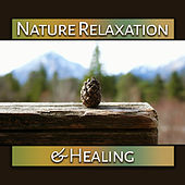Nature Relaxation & Healing – Soothing Sounds, Clarity and Strength of Will, Water Waves de Nature Sounds Artists