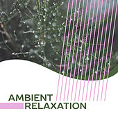 Ambient Relaxation – New Age Music, Helpful for Rest, Deep Relaxation, Sounds of Nature by Nature Sound Series