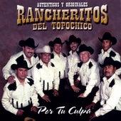 Por Tu Culpa by Los Rancheritos Del Topo Chico