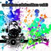 Maximum Minimalism, Vol. 3 by Various Artists