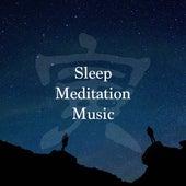 Sleep Meditation Music by Various Artists