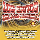 Los Exitos del Año Sonidero by Various Artists
