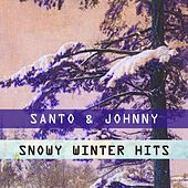 Snowy Winter Hits di Santo and Johnny