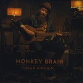 Monkey Brain by Sean Pinchin