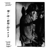 Hold That Tiger by Sonic Youth