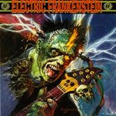 Burn Bright, Burn Fast by Electric Frankenstein