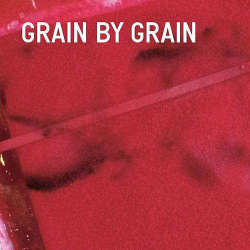 Grain by Grain by Arto Lindsay