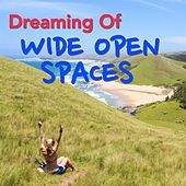 Dreaming Of Wide Open Spaces von Various Artists