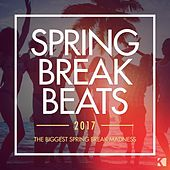 Spring Break Beats 2017 (The Biggest Spring Break Madness) von Various Artists