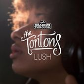 Lush by The Tontons