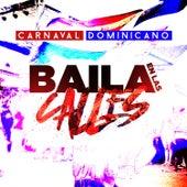 Carnaval Dominicano - Baila en las Calles by Various Artists