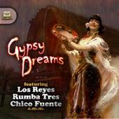 Gipsy Dreams von Various Artists