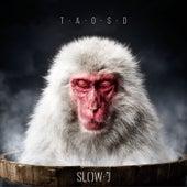 The Art of Slowing Down de Slow J