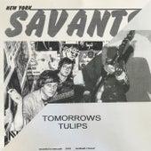Split Single by Various Artists