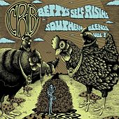 Betty's Self-Rising Southern Blends, Vol. 3 by Chris Robinson