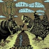 Betty's Self-Rising Southern Blends, Vol. 3 de Chris Robinson