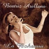 Beatriz Arellano by Beatriz Arellano